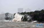 """台风""""云雀""""影响减弱 上海解除台风黄色预警信号"""