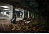 印尼龙目岛地震造成82人死亡 40余名被困中国游客安全并开始撤离