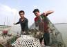 污水过境致洪泽湖蟹塘受损,江苏省环保厅启动紧急响应