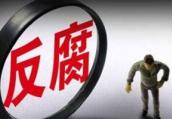 洛阳市西工区红山街道办事处工作人员赵信安接受调查