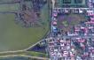 河南加快湿地修复与建设 黄河沿线湿地公园将成