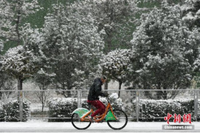 暴雪预警拉响!北方遇今冬以来最大范围降雪