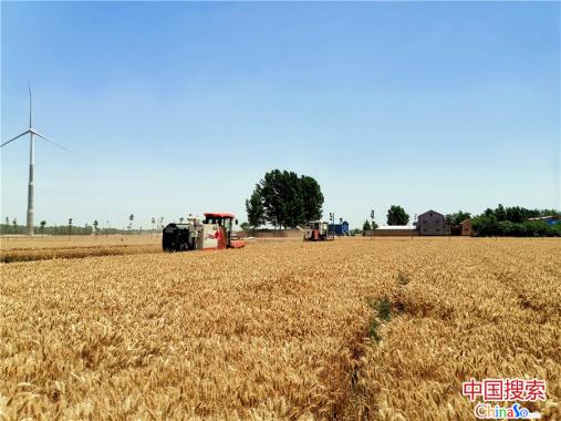 """河南滑县:""""三夏""""生产大幕拉开 181万亩小麦丰收在望"""